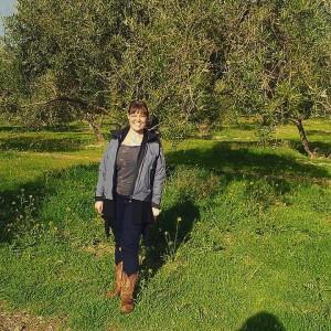 Espíritu Santo olive grove, Úbeda, Jaén.